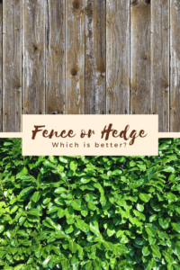fence or hedge