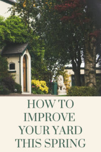 How to Improve Your Yard this Spring