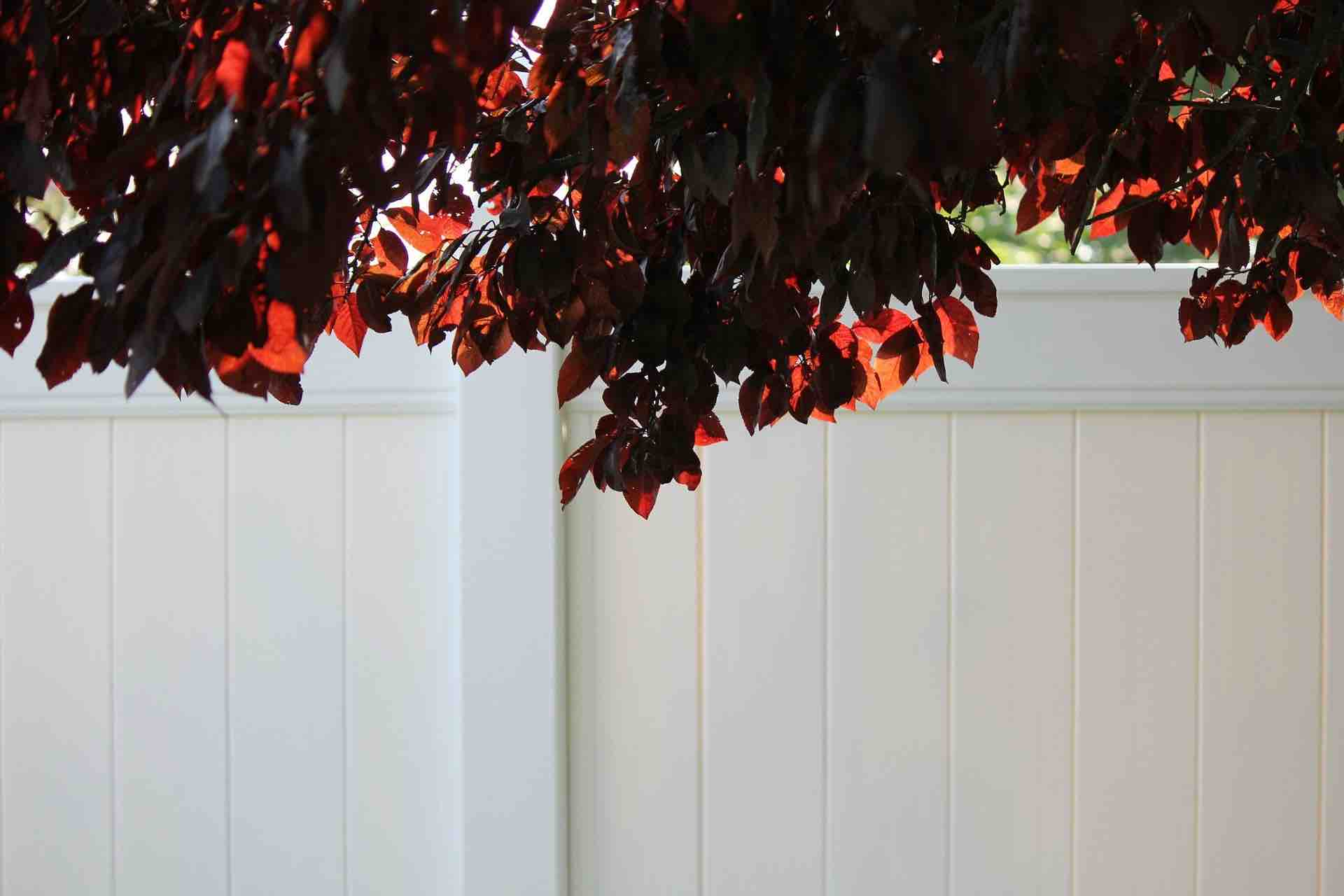 vinyl fencing privacylink