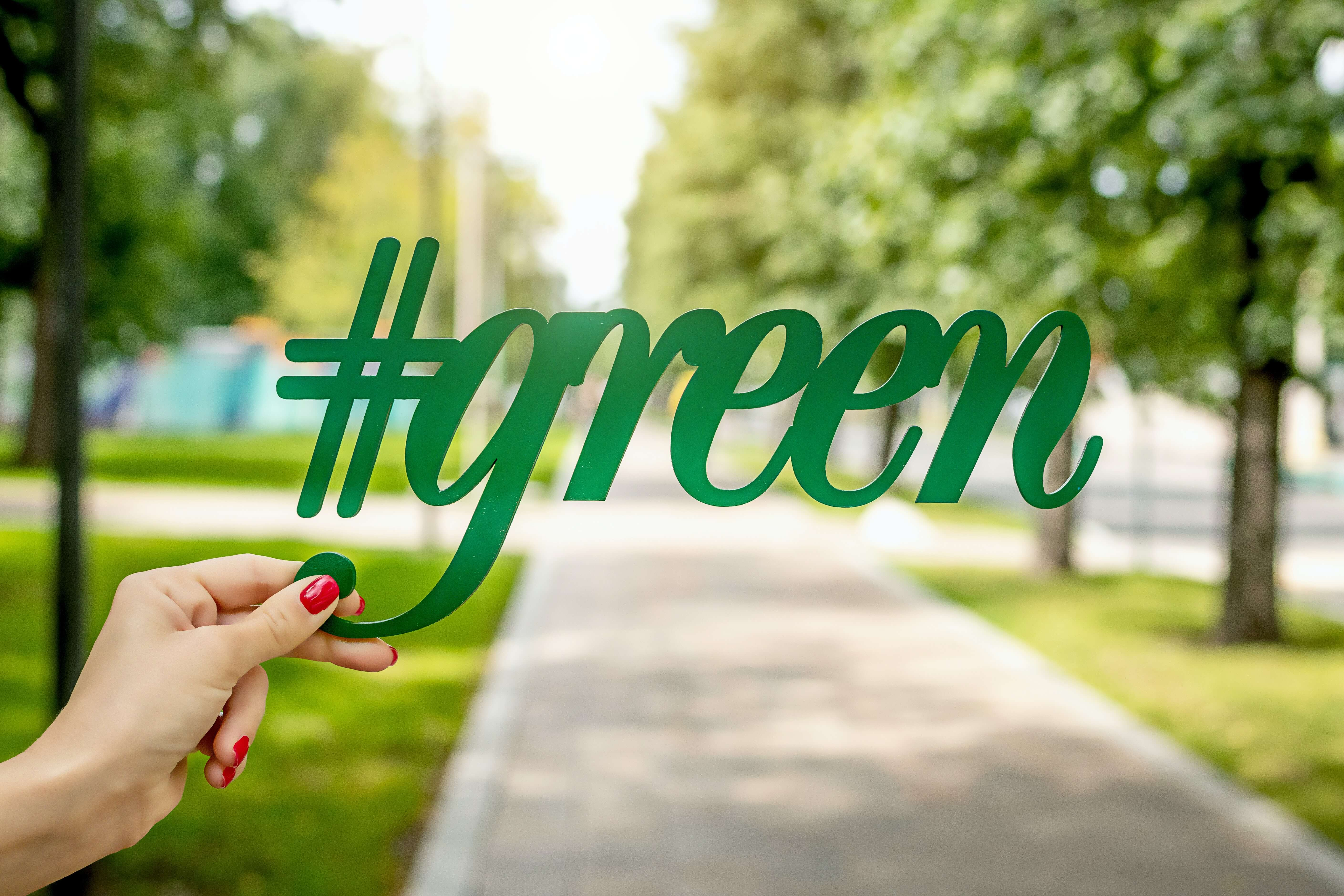 person holding green sign graphic